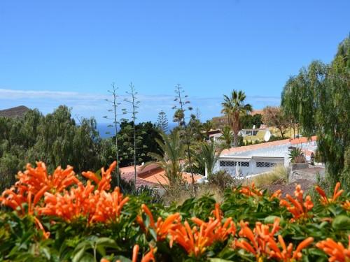 Blick vom Garten auf Chayofa